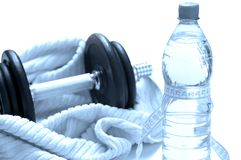 Forma fisica, salute e dieta Immagine Stock Libera da Diritti