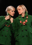 Forma gêmea das irmãs Fotos de Stock Royalty Free