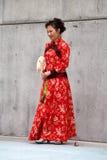 Forma histórica chinesa Imagens de Stock