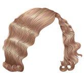 Forma loura da beleza das cores do kare na moda dos cabelos da mulher ondas retros do estilo 3d realístico Imagem de Stock