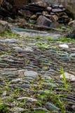 Forma lunga della strada di pietra con erba Fotografia Stock Libera da Diritti