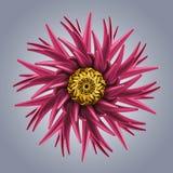 forma organica astratta della stella del fiocco di neve del fiore 3d royalty illustrazione gratis