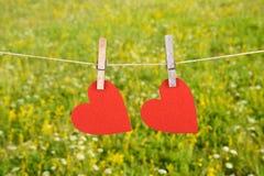 Forma rossa del cuore che appende, sopra lo sfondo naturale Immagine Stock Libera da Diritti