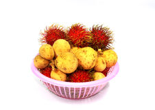 Forma Tailandia della frutta del rambutan e del Longan Immagine Stock Libera da Diritti