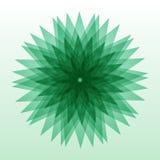 Forma verde abstrata de Multigonal isolada no fundo Ilustração do vetor para sua água fresca de design Foto de Stock Royalty Free