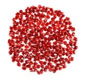 Forma vermelha do círculo feita de sementes da romã Imagem de Stock