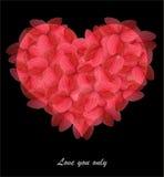 Forma vermelha do coração feita das folhas Imagens de Stock
