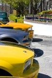 Formación 2008 del mustango Foto de archivo