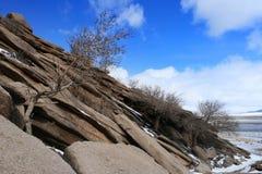 Formación de las capas o de los estratos de la roca con el árbol y la nieve secos en la estepa de Mongolia foto de archivo libre de regalías