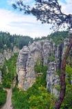Formación de las torres de la roca de Prachov en República Checa Foto de archivo