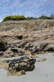 Formación de roca con los mejillones, Bretaña, Francia Fotos de archivo libres de regalías