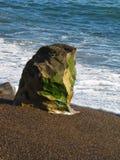 Formación de roca cubierta de musgo en la playa Fotos de archivo libres de regalías