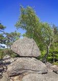 Formación de roca en el bosque, montañas de Sokole Fotografía de archivo