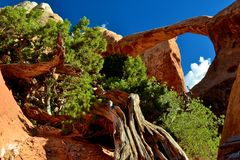 Formación de roca en el desierto 1 Imagenes de archivo