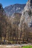 Formación de roca en Erma River Gorge Imagenes de archivo