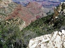 Formación de roca Grand Canyon fotografía de archivo
