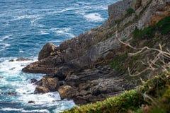Formación de roca Holey en la costa foto de archivo
