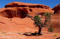 Formación de roca roja en Canyonlands NP Fotos de archivo libres de regalías