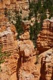 Formación de roca roja en el parque de la barranca del bryce, Utah Fotografía de archivo