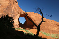 Formación de roca y árbol del enebro - valle del monumento Fotos de archivo