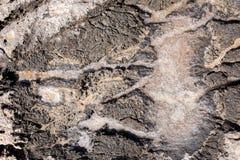 Formación de sal del mar Imagen de archivo