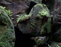 Formación rocosa de la cabeza de perros en Teplicke skaly Fotografía de archivo libre de regalías