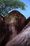 formaci granitu kamień Zdjęcie Royalty Free