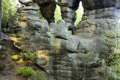 Formaciones de la piedra arenisca en bosque del abedul Foto de archivo