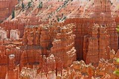 Hoodoos rojos en el barranco de Bryce Fotos de archivo libres de regalías