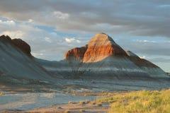 Formaciones de la tienda de los indios norteamericanos del bosque aterrorizado - Arizona fotografía de archivo libre de regalías
