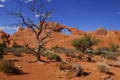 Formaciones de roca Foto de archivo libre de regalías