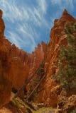 Formaciones de roca de la barranca de Bryce Fotografía de archivo libre de regalías