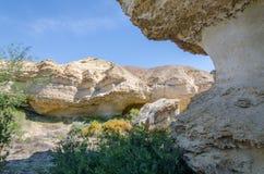 Formaciones de roca naturales y vegetación escasa en el lago Arco en desierto del ` s Namib de Angola Imagen de archivo