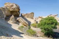 Formaciones de roca naturales y vegetación escasa en el lago Arco en desierto del ` s Namib de Angola Fotografía de archivo libre de regalías