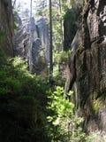 Formaciones de roca Skalne Mesto fotos de archivo
