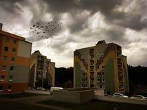 formad fågelflockhjärta arkivfoton