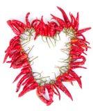 formad torkad hjärta för chaplet chilies Royaltyfria Bilder