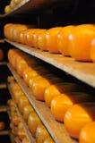 formaggio Fotografia Stock Libera da Diritti