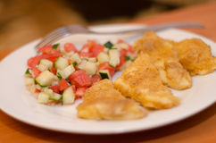 Formaggio arrostito con un'insalata dei pomodori e dei cetrioli Immagini Stock Libere da Diritti