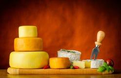 Formaggio, camembert e Formaggio-ruota Immagine Stock Libera da Diritti