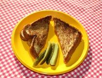 Formaggio cotto e Pickles-2 Immagine Stock