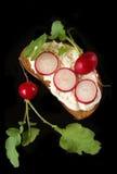 Formaggio cremoso e del ravanello su una fetta di pane Fotografie Stock Libere da Diritti