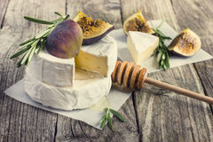 Formaggio del camembert con i rosmarini, i fichi ed il miele Immagine Stock Libera da Diritti