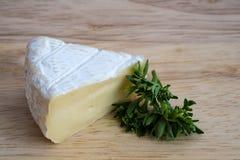Formaggio del camembert con prezzemolo Immagini Stock Libere da Diritti