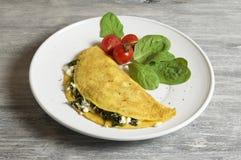 Formaggio delle pecore ed omelette degli spinaci fotografie stock libere da diritti