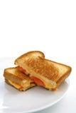 Formaggio e panino cotti del tomatoe Immagini Stock Libere da Diritti