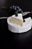 Formaggio fresco del camembert Immagini Stock