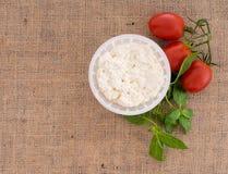 Formaggio fresco di ricotta dell'artigiano in muffa con i pomodori, basilico Immagini Stock