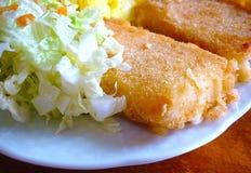 Formaggio fritto con insalata Fotografia Stock