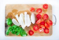 Formaggio italiano della mozzarella con i pomodori ciliegia ed il basilico fresco fotografia stock libera da diritti